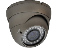 Camera Surveillance and Remote Video Access